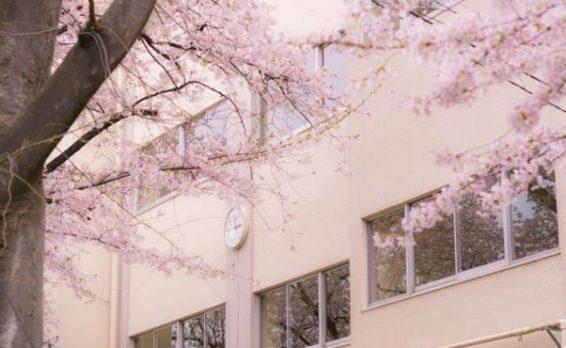 「公立高校・私立高校の学費はいくら?高校生の教育費事情」イメージ画像